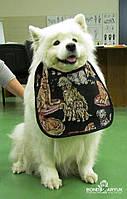 Нагрудник / слюнявчик для собаки 4Paws Medium, фото 1