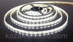 Лента светодиодная REN  IP 65  35x28smd