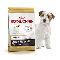 Royal Canin Jack-Russell Terrier Adult 3кг -корм для собак породи джек-рассел-тер'єр з 10 місяців