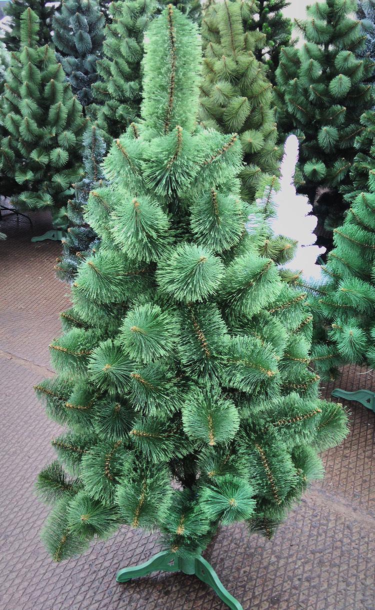 Сосна зеленая распушенная 1,5 м