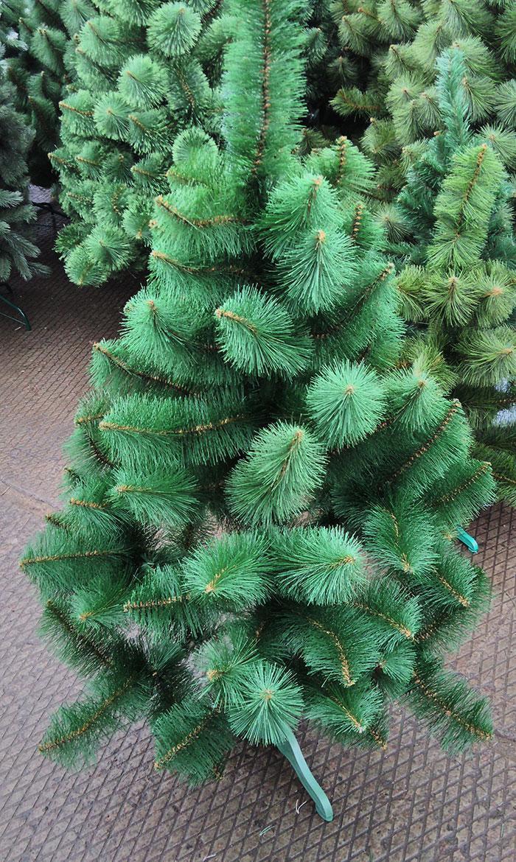 Сосна светло зеленая 120 см