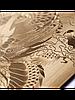 Защитное стекло с рисунком дракона на 2 стороны для Iphone 5/5S золото