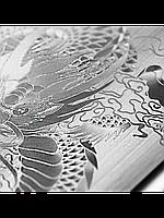 Защитное стекло с рисунком дракона на 2 стороны для Iphone 6/6S серебро, фото 1