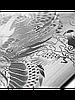 Защитное стекло с рисунком дракона на 2 стороны для Iphone 6/6S Plus серебро