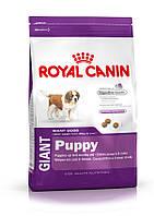 Royal Canin Giant Puppy 15кг -корм для щенков собак очень крупных размеров