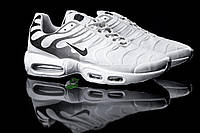 Nile Air Max TN