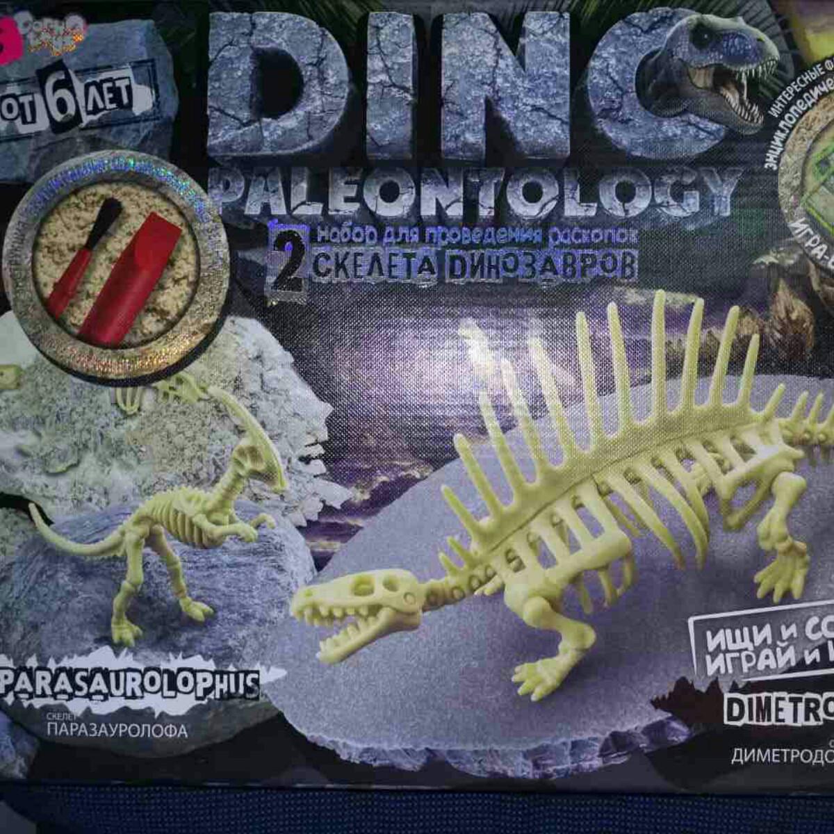 Набор DINO PALEONTOLOGY раскопки динозавров DP-01-01,02,02,03,04,05