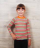 Реглан для девочек на кнопках( разные расцветки) 48