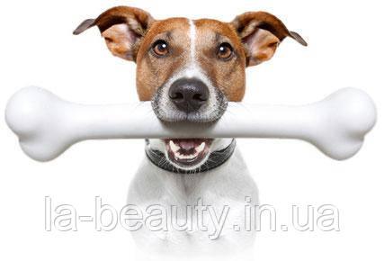 Идеи подарков или Что подарить владельцу собаки, кинологу или самой собаке?