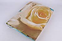 Евро комплект постельного белья (Арт. AN301/791)