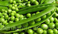 Семена гороха овощного Сомервуд 100.000 семян Syngenta