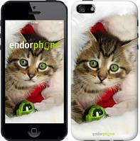 """Чехол на iPhone 5 Новогодний котёнок в шапке """"494c-18-532"""""""