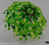 """Прозрачный зонтик трость с листьями от фирмы """"Smile"""""""