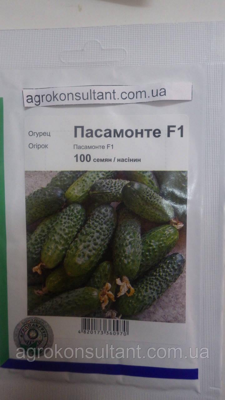 Семена огурца Пасамонте F1 (Syngenta, АГРОПАК+), 100 семян — ранний гибрид (40-42 дня), партенокарпик