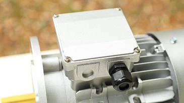 Электродвигатель Neri Motory MR100L2