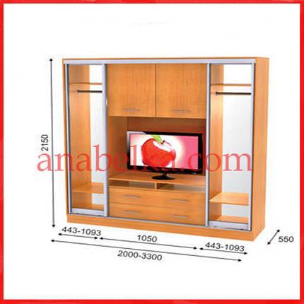 Шкаф купе ТВ-1  3200*550*2150  (Анабель), фото 2