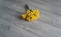 Складні тичинки  (незабудки ) - жовтий   колір