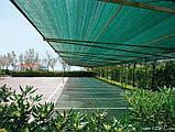 Захисна сітка PTS-120 4,0x50 ПЕНДЕ (HDPE) зелена, фото 4