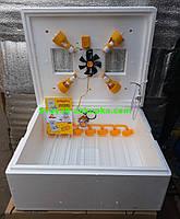 "Инкубатор ""Теплуша"" 63 яйца (Автоматический переворот). Цифровой термометр."