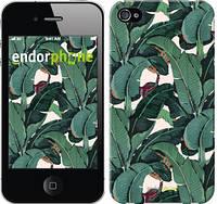 """Чехол на iPhone 4 Банановые листья """"3078c-15-8079"""""""