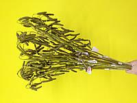 Искусственные  ветки  березовые бруньки
