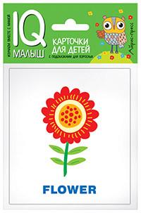 Розумний малюк. ENGLISH. Рослини. Набір карток для дітей. 978-5-8112-5721-8