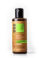 Органический шампунь Soul tree для восстановления волос с Трифалой и кондиционером из Хны 200мл, фото 1