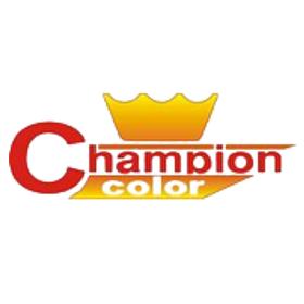 Аэрозольная краска Champion