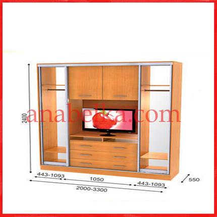 Шкаф купе ТВ-1  2400*550*2400  (Анабель), фото 2
