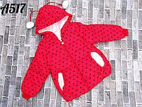Детская Рубиново-красная куртка ветровка демисезонная для девочки  4года