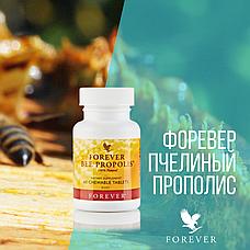 Форевер Пчелиный Прополис (60 табл.), фото 2
