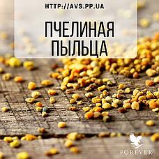 Форевер Пчелиная пыльца (100 табл.), фото 3