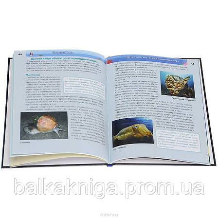 Енциклопедія. Підводний світ, фото 2