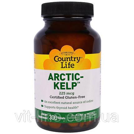 Country Life, Arctic-Kelp, арктичні бурі водорості, 225 мкг, 300 таблеток, фото 2