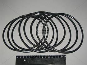 Кольцо уплотнительное на гильзу СМД 17, 18 (Руслан-Комплект)  Р/К-2205