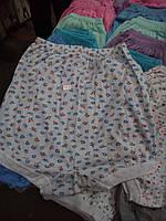 Панталоны шортики,48-56рр
