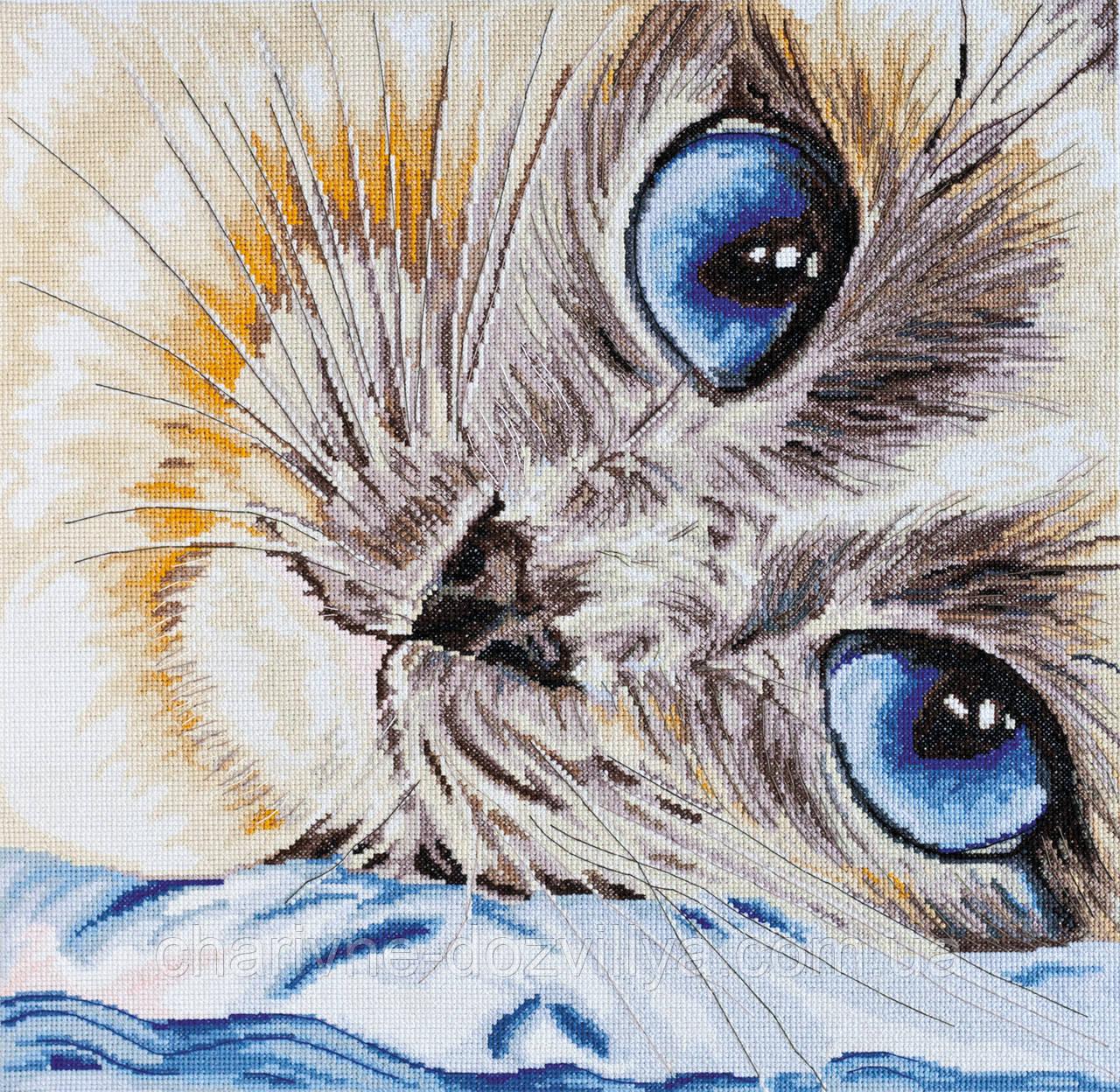 """Набор для вышивки крестиком котик """"Сапфировый взгляд"""""""