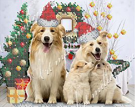 """Схема для вышивки бисером  W-521 """"Семейство собак"""""""