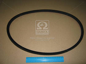 Ремень SPВ 1250 (УБ-1250) (пр-во Rubena) SPВ 1250