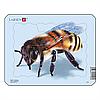 Пазл-вкладыш Пчела, серия МИНИ, Z2-4, Larsen
