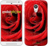 "Чехол на Motorola Moto G2 Красная роза ""529u-330-5114"""