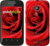 """Чехол на Motorola Moto E2 Красная роза """"529u-377-5114"""""""