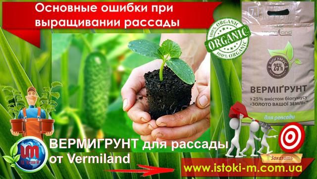 выращивание рассады дома_грунт для выращивания рассады_почва для рассады_вермигрунт для рассады