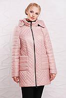 Стильная демисезонная куртка 48205 пудра
