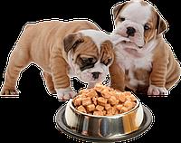 Консервы для собак и щенков
