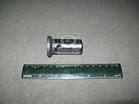 Толкатель клапана МТЗ 80, 82 (пр-во Россия). Ціна з ПДВ