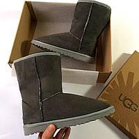 Серые угги женские, зимняя обувь Ugg