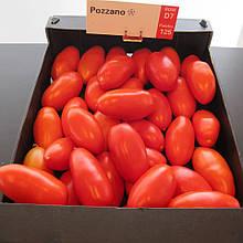 Семена томата Поззано F1 (250 сем.) Enza Zaden