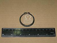 Кольцо стопорное 42х2,5 (пр-во BPW) 02.5676.01.00
