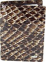 Кредитница Petek 1042, Коричневый, Рептилия, Лакированная, Кожа, фото 1